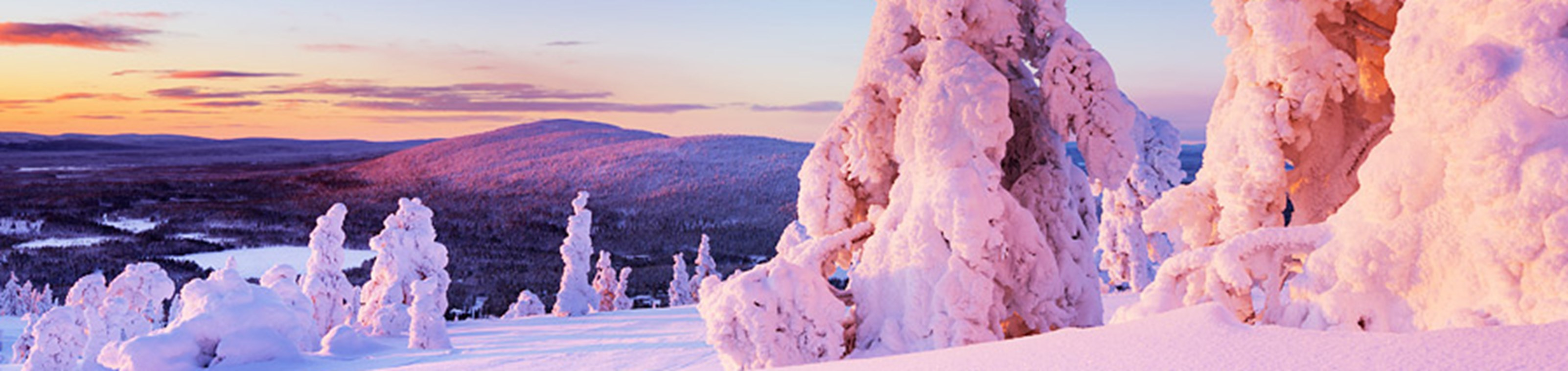 Uniek winterlandschap in Lapland